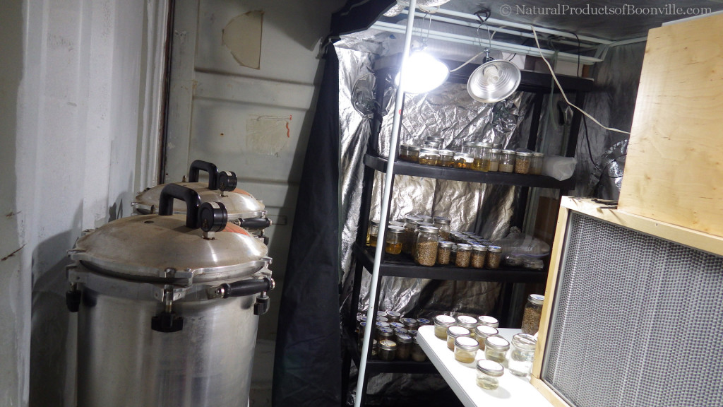inside our inoculation lab; pressure cookers on left & flow hood on right