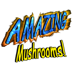 Amazing Mushrooms!