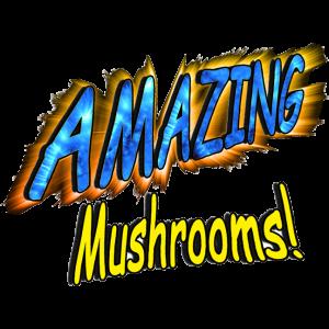 Amazing Mushrooms!